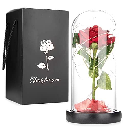 Mafiti Rosa eterna, Rosa chapada en Oro, luz de Rosa Artificial, Rosa preservada en cúpula Cristal, Elegante y Brillante, decoración fantástica para Fiestas y Navidad, Regalo Ideal Entre Parejas