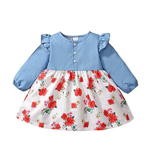 DaMohony Vestido de las muchachas del bebé, cuello redondo con volantes floral vestido de fiesta de verano (18-24 meses, azul y blanco)