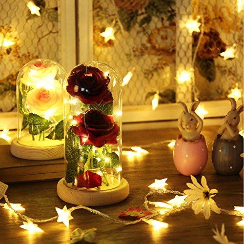 SUNJULY Bella y Bestia se levantó, 20 Rosa LED Tira de luz encantada con pétalos caídos en cúpula de Vidrio sobre Base de Madera DIY Regalo para cumpleaños de San Valentín Boda Navidad(Rojo)